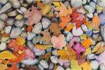 pebbles & leaves