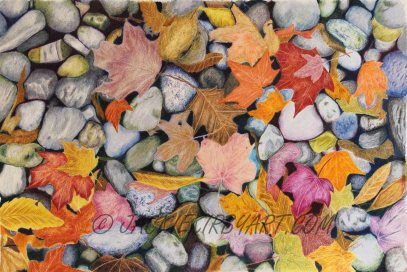 Leaves & Pebbles