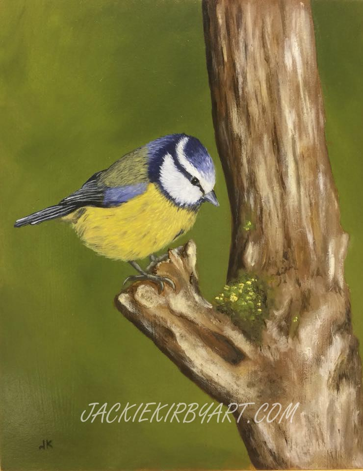 Blue Tit in Oils on board
