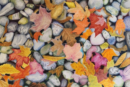 Pebbles & Leaves in coloured pencil